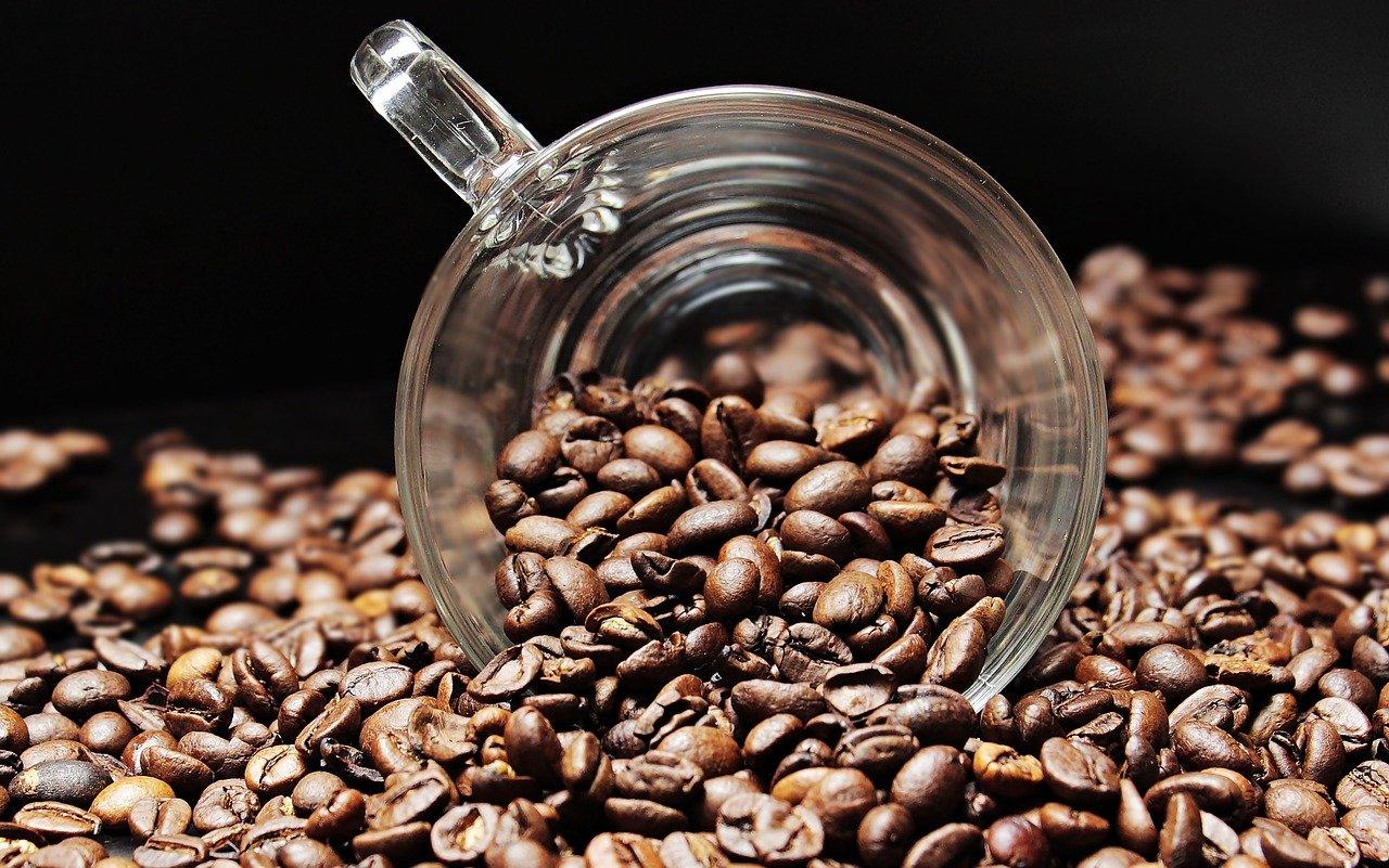 granos de café, taza, taza de café