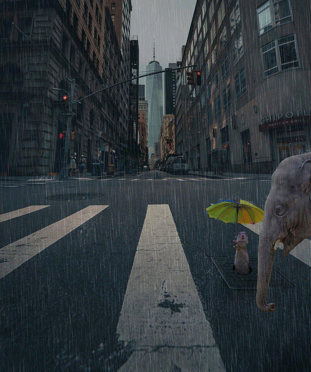 ciudad, calle, lluvia