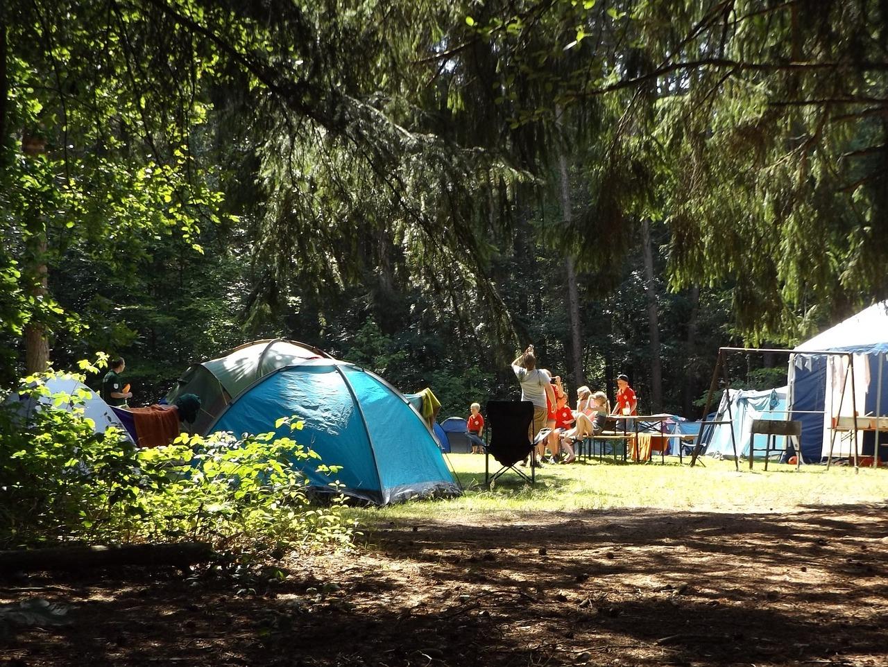 acampar, bosque, el verano