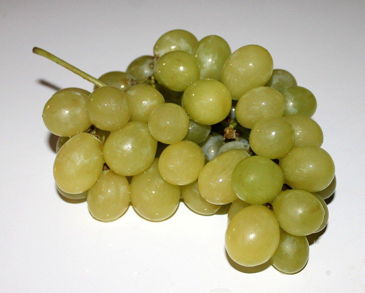 uvas, fruta, frutas