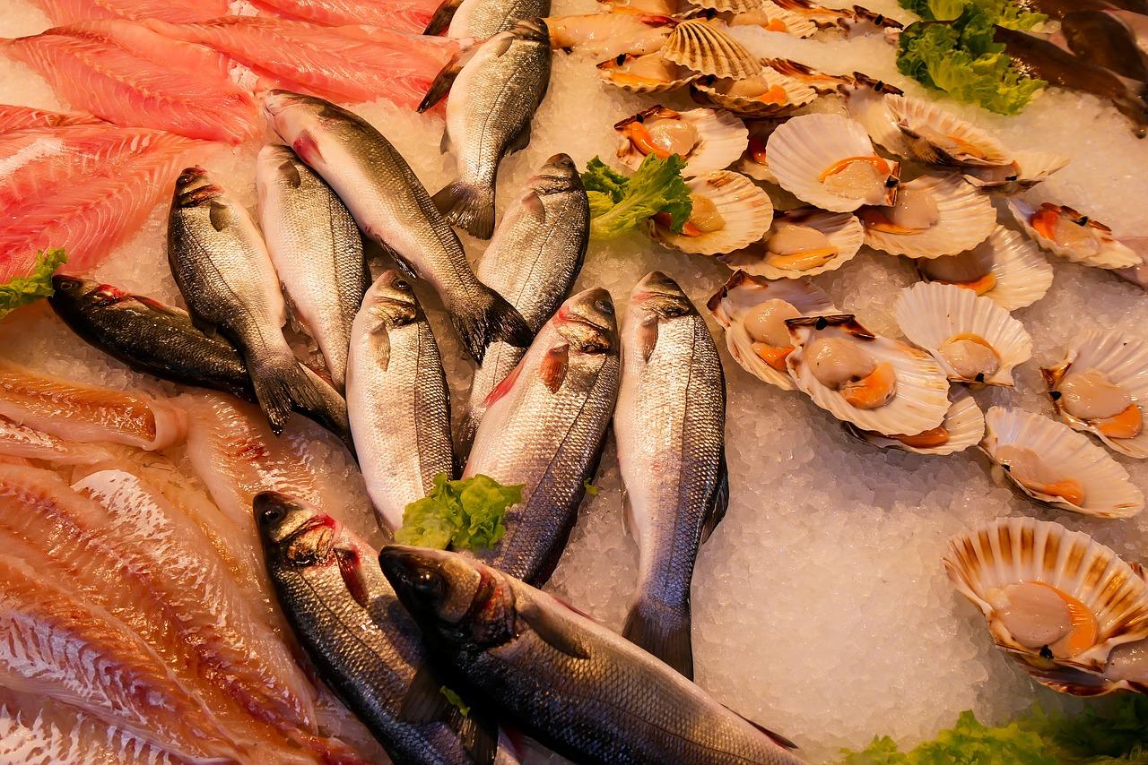 comida, pez, mariscos