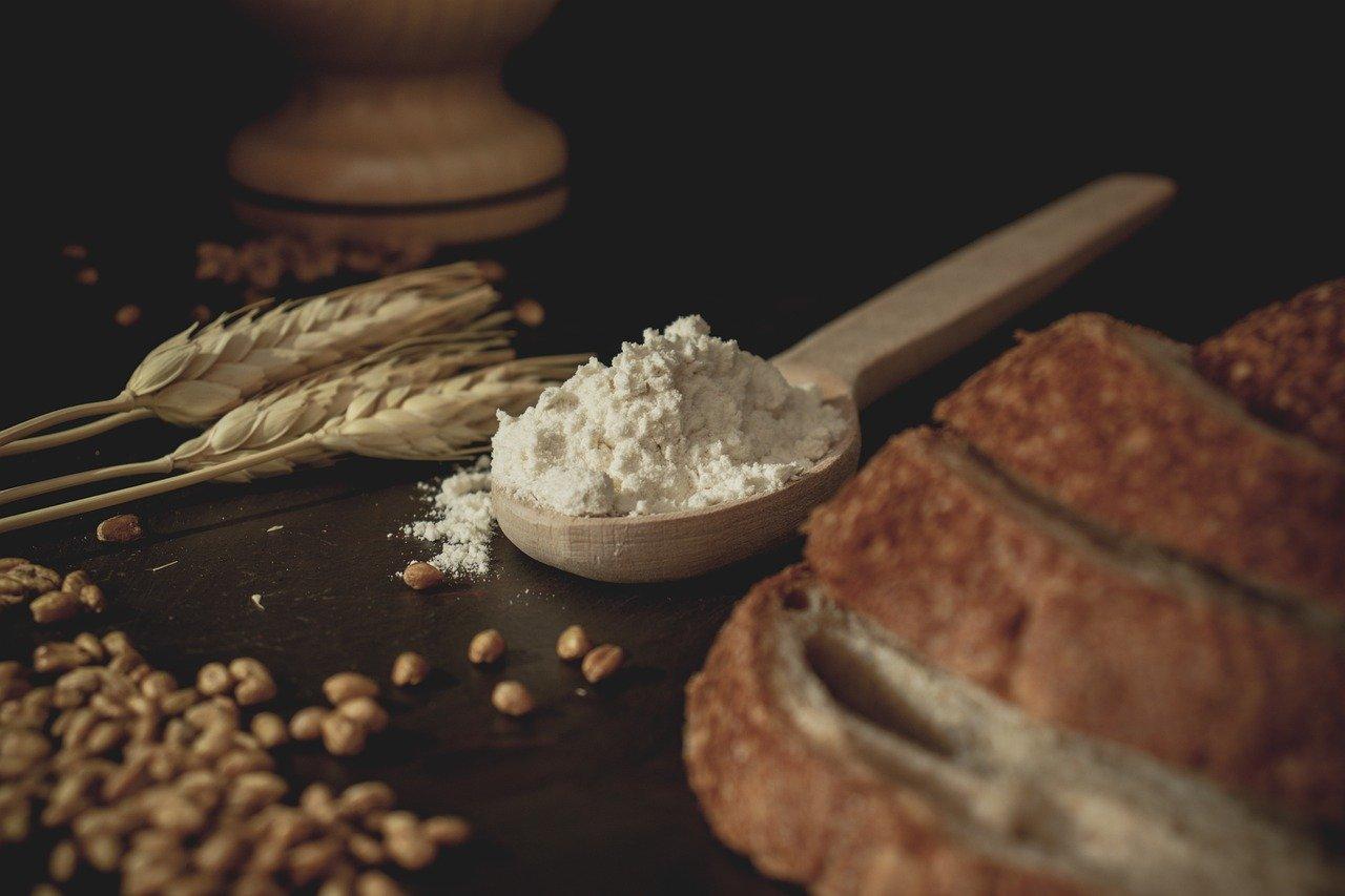 pan, trigo, harina