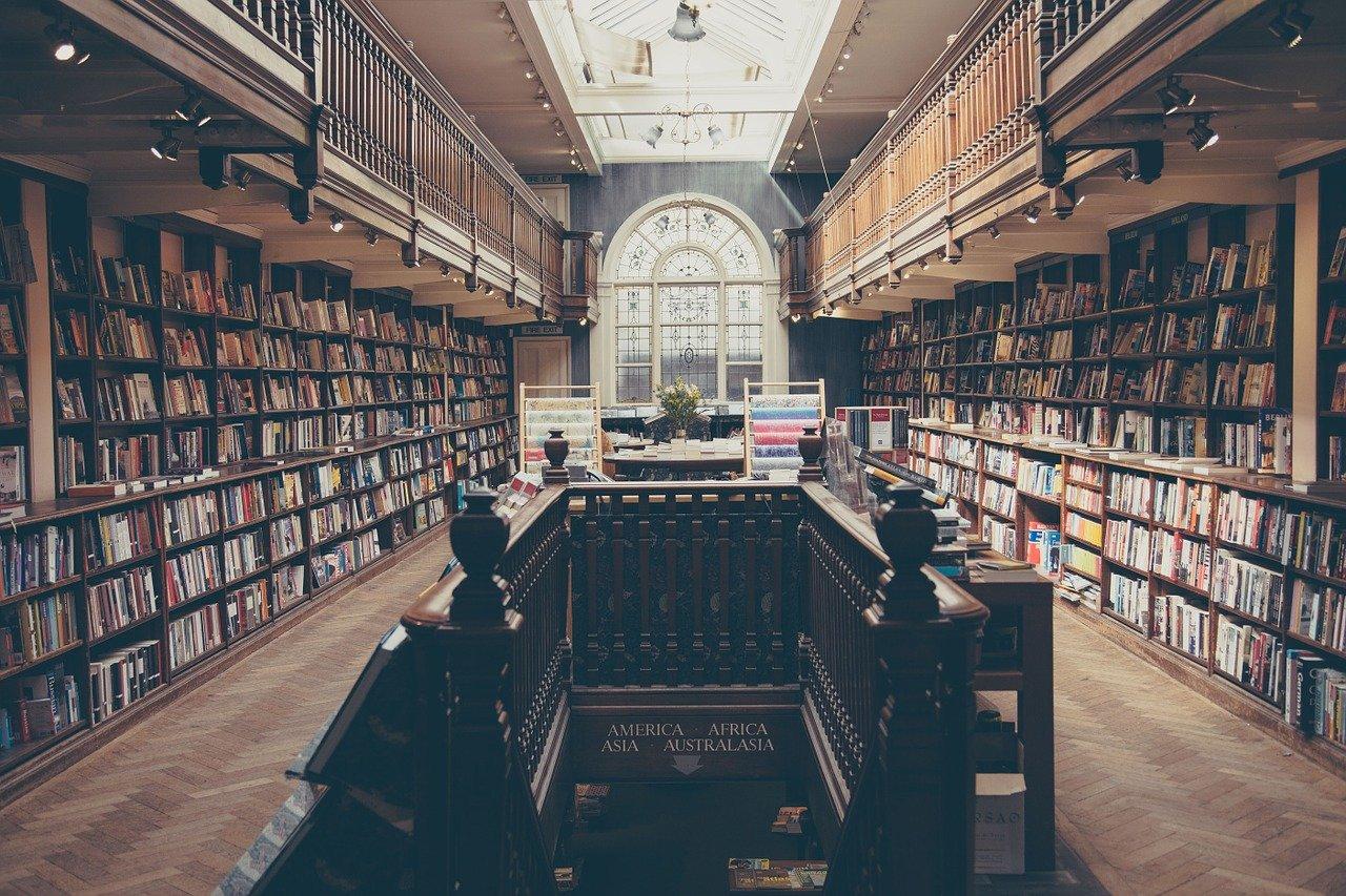 biblioteca, libros, educación