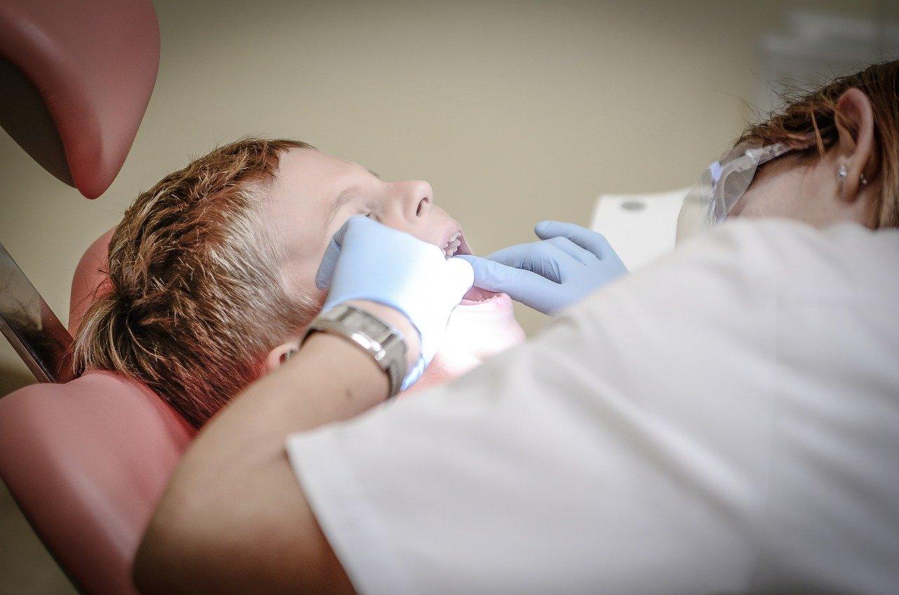 dentista, paciente, cuidado dental