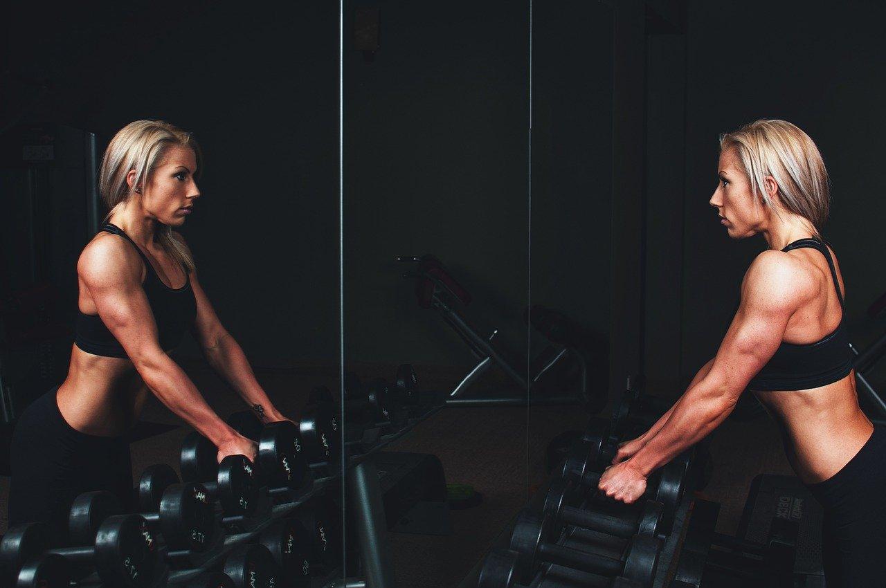 formación, músculos, brazos