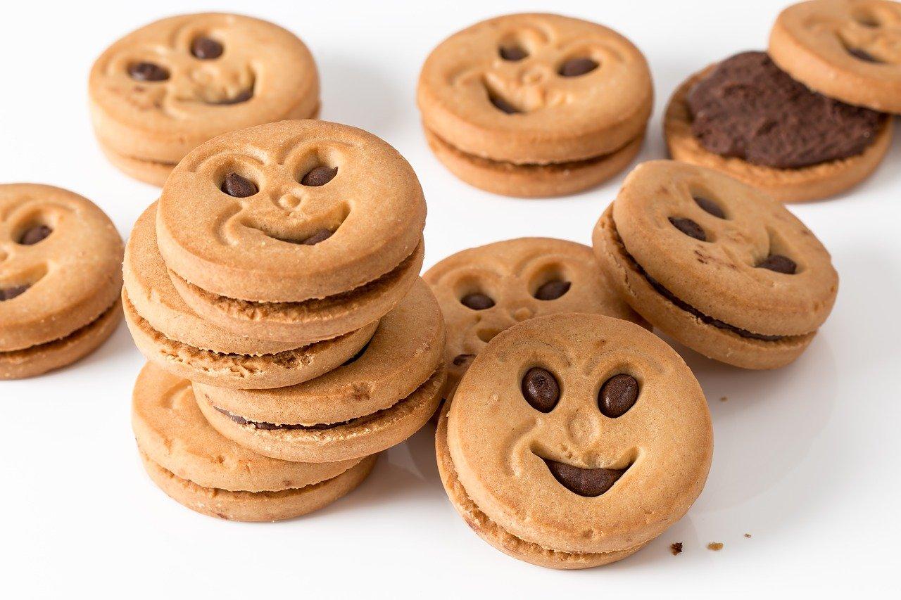 galleta, redondo, dulce