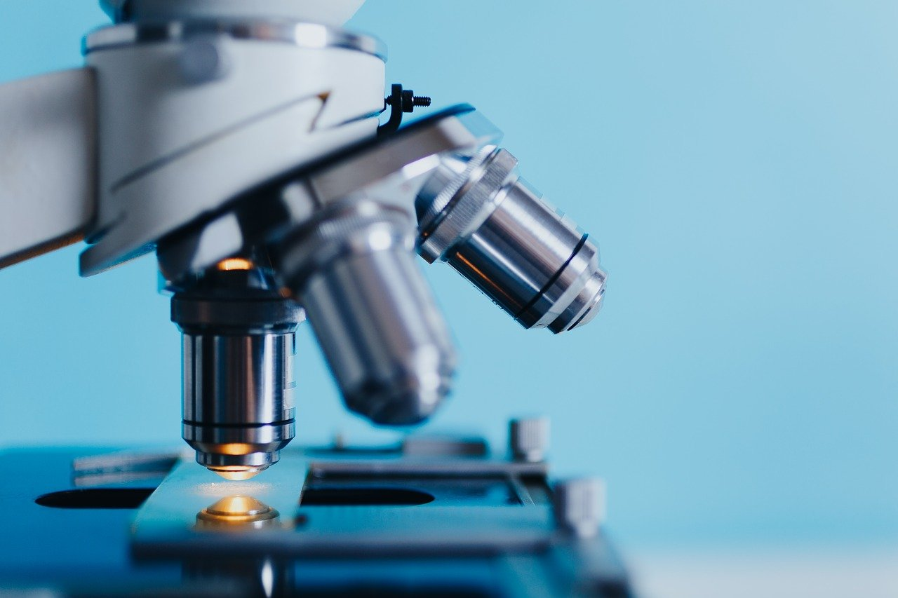análisis, bioquímica, biólogo