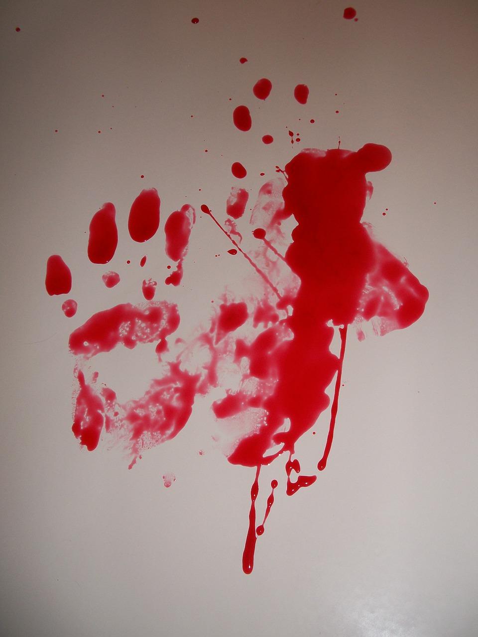 sangre, crimen, horror