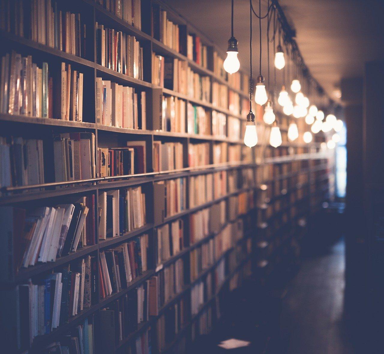 libros, biblioteca, habitación